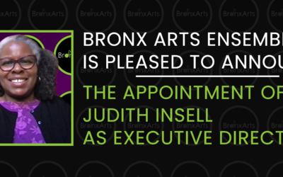 Bronx Arts Ensemble Appoints Judith Insell as Executive Director